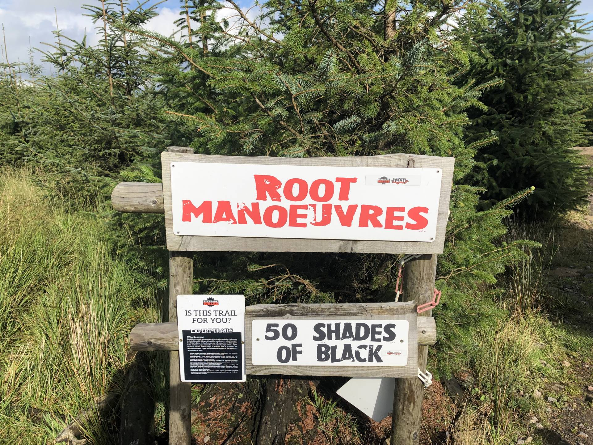 Roots Manoeuvres